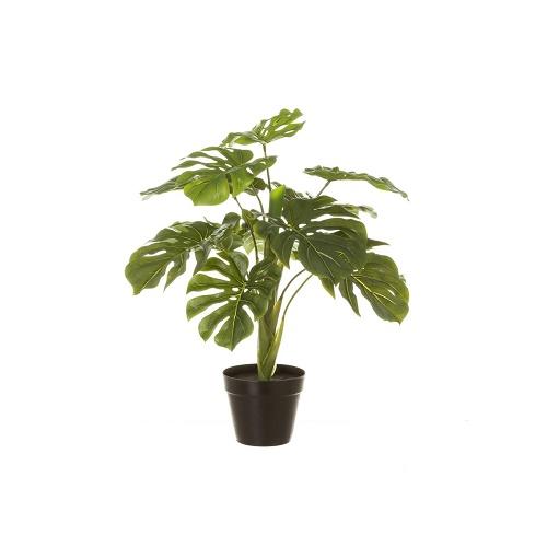Planta Artificial 60 cm