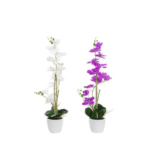Planta Orquídea 18 x 18 x 60 cm